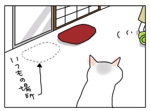 猫と一緒-20130513_05