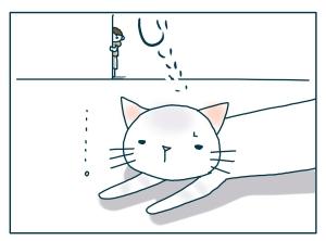 猫と一緒-20090709_13