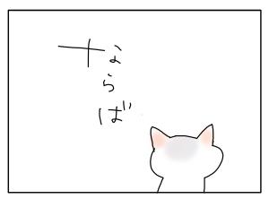 猫と一緒-20101208_10