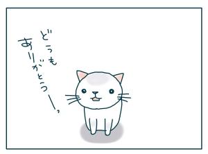 猫と一緒-20090709_12
