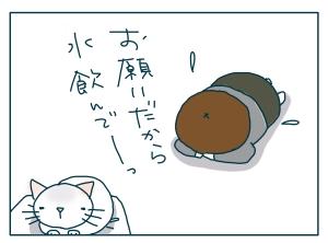 猫と一緒-20090706_04