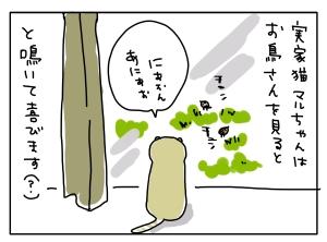 20160530_01
