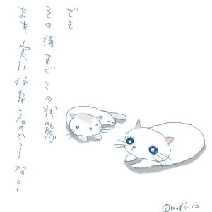 猫と一緒-20070706_3
