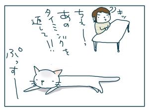 猫と一緒-20090527_23