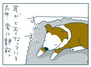 猫と一緒-20090826_16