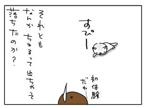 猫と一緒-20100622_02