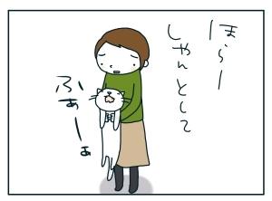 猫と一緒-20091230_10