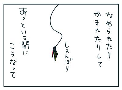 20190226_02