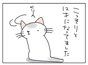 猫と一緒-20130507_04