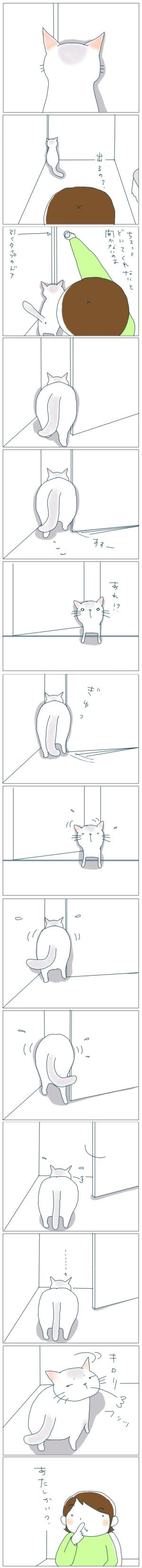猫と一緒-20081128