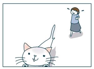 猫と一緒-20090709_09