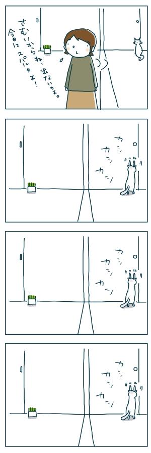 猫と一緒-20081227-02