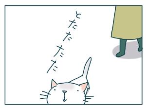 猫と一緒-20090120-08
