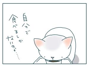 猫と一緒-20090929_11