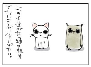 猫と一緒-20100730_10