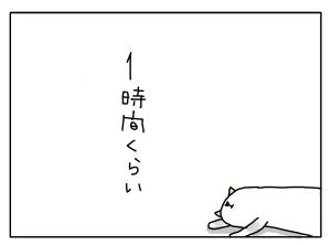 猫と一緒-20130529_10