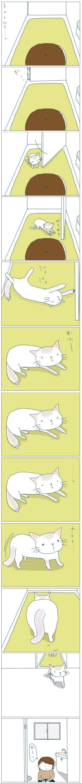 猫と一緒-20081120