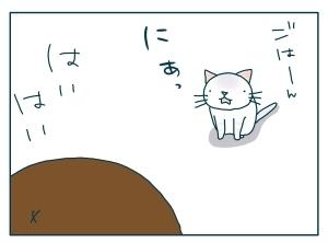 猫と一緒-20090924_14