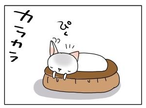 猫と一緒-20110116_05