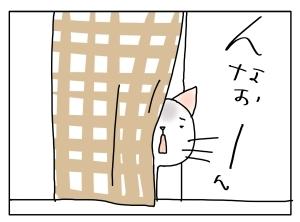 猫と一緒-20130219_14