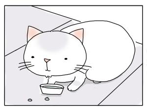 猫と一緒-20100217_20