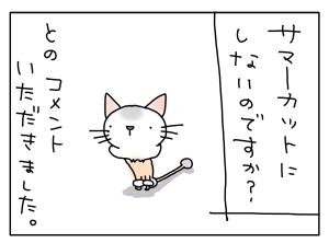 猫と一緒-20110722_01