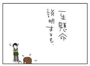 猫と一緒-20100629_02