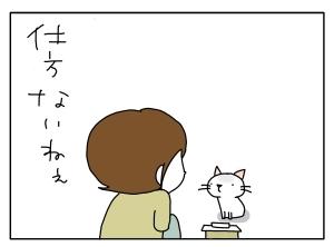 猫と一緒-20101108_03