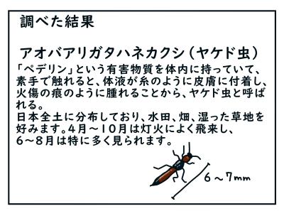 20200816_07