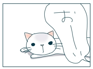 猫と一緒-20091216_07