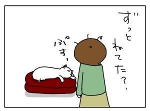 猫と一緒-20121010_11