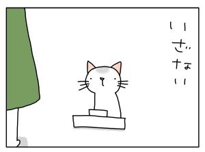 猫と一緒-20110506_08