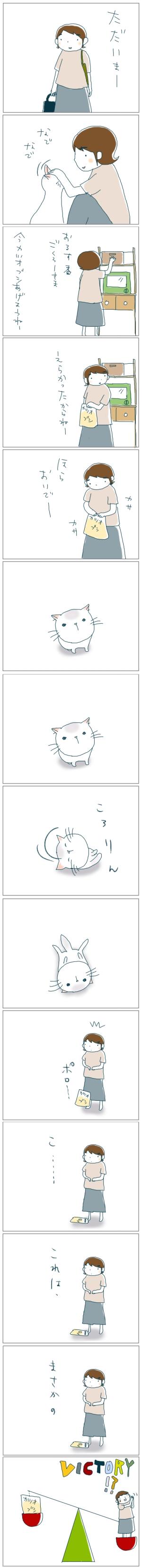 猫と一緒-20080920