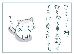 猫と一緒-20090716_03