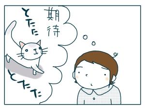 猫と一緒-20090706_07