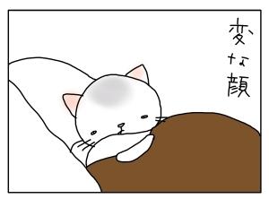 猫と一緒-20131204_03