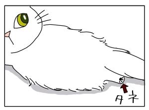 猫と一緒-20100324_04