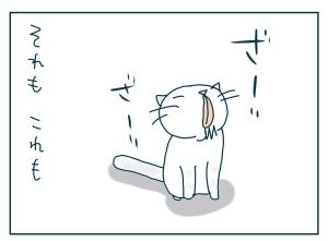 猫と一緒-20090917_02