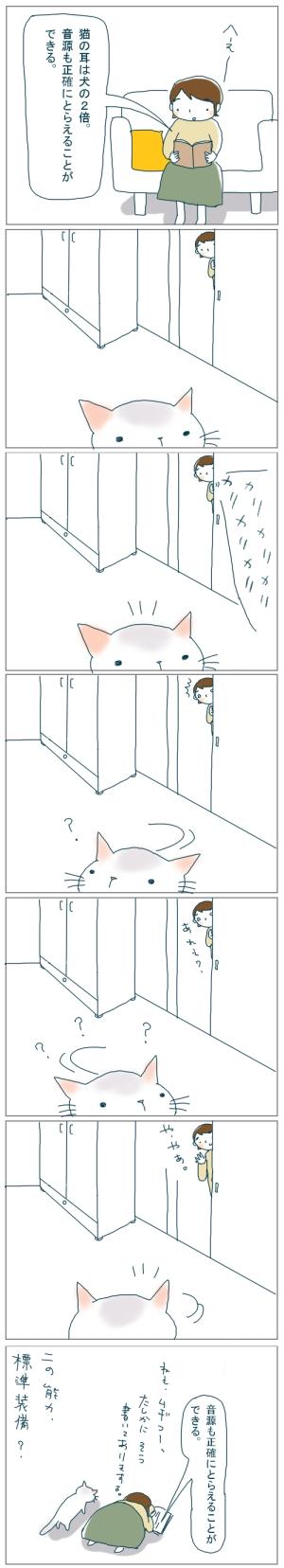 猫と一緒-20081031
