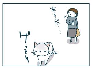猫と一緒-20090708_01