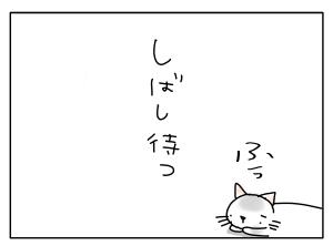 猫と一緒-20130529_09