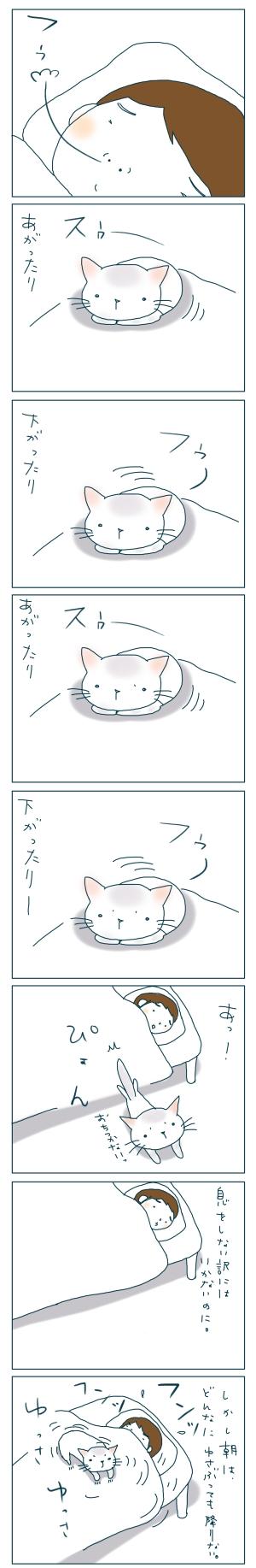 猫と一緒-20081130-02