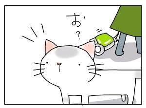 猫と一緒-20131105_03