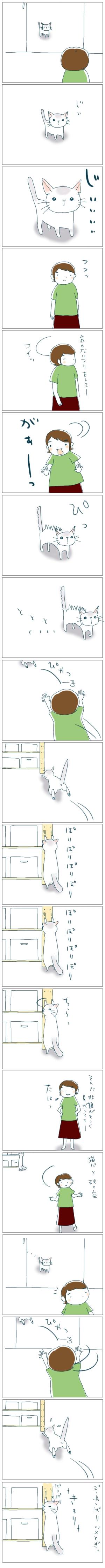 猫と一緒-20080918