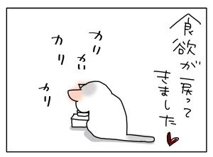 猫と一緒-20110213_02