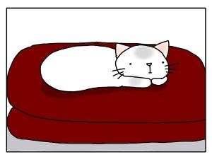猫と一緒-20121010_06