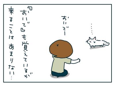 20190530_05