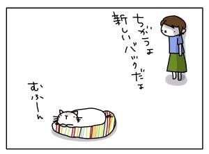 猫と一緒-20130725_08