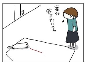 猫と一緒-20130711_08