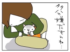 猫と一緒-20110216_07